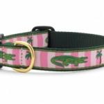 ucMayfield-alligator-dog-collar-290x218
